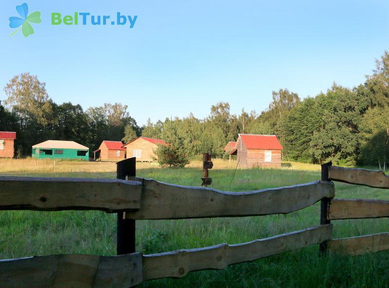 Отдых в Белоруссии Беларуси - кемпинг Дубы - Территория и природа