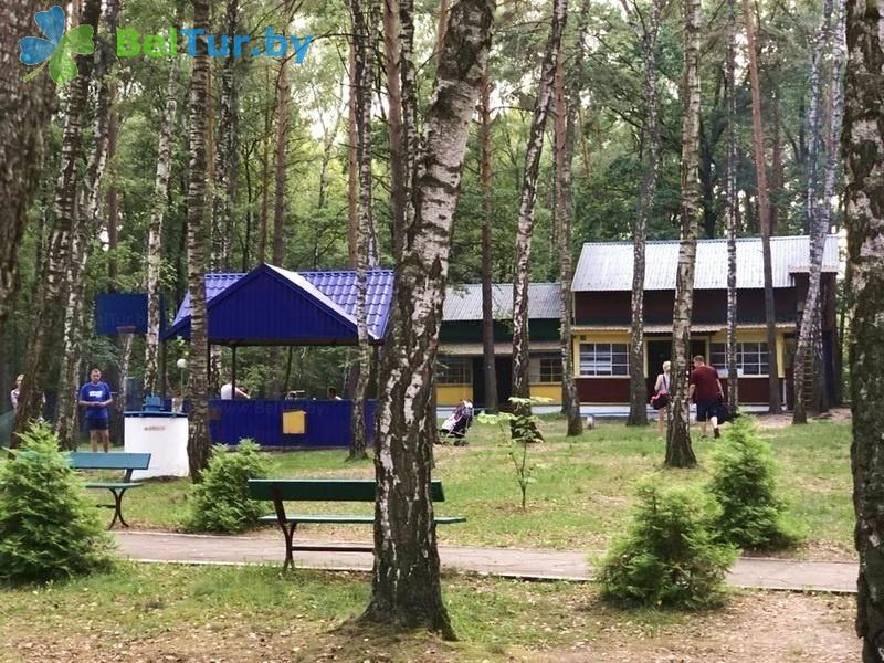 Отдых в Белоруссии Беларуси - база отдыха Электрон - Территория и природа