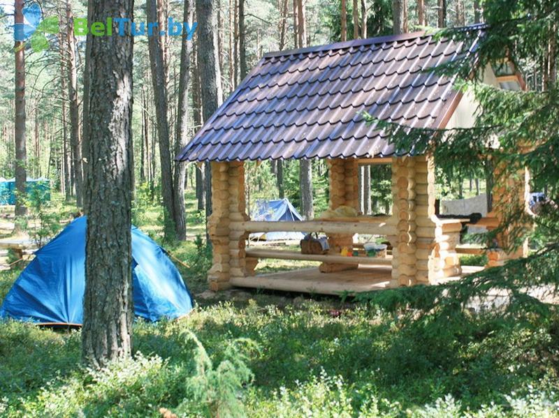 Отдых в Белоруссии Беларуси - кемпинг Нарочь - Площадка для палаток