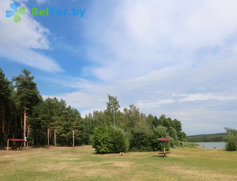 Отдых в Белоруссии Беларуси - база отдыха Лесное озеро - Пляж