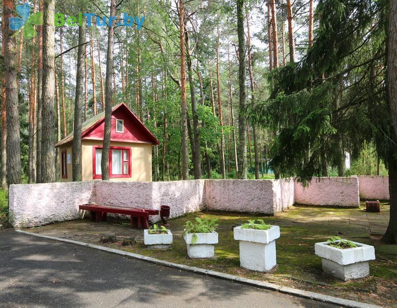 Отдых в Белоруссии Беларуси - база отдыха Лесное озеро - Территория и природа