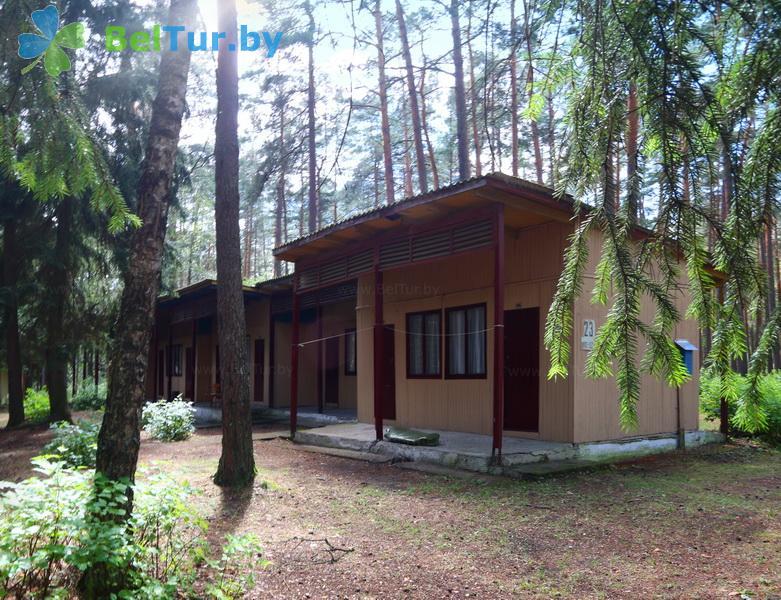 Rest in Belarus - recreation center Lesnoe ozero - summer houses