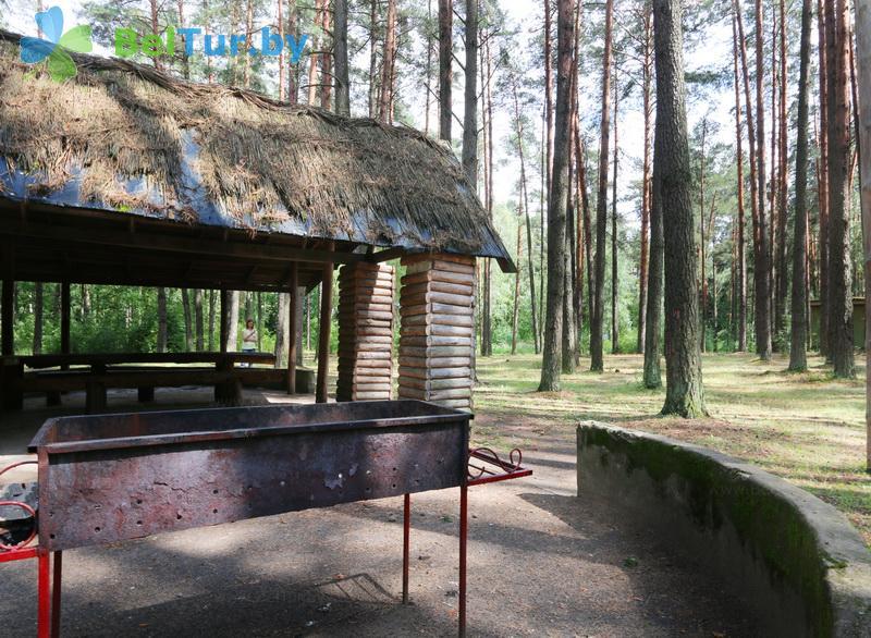 Отдых в Белоруссии Беларуси - база отдыха Лесное озеро - Площадка для шашлыков