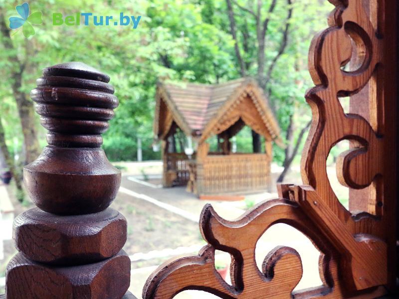 Отдых в Белоруссии Беларуси - гостевой дом Сосны - Территория и природа