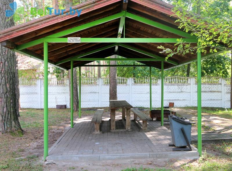 Отдых в Белоруссии Беларуси - база отдыха Лесные дали - Площадка для шашлыков