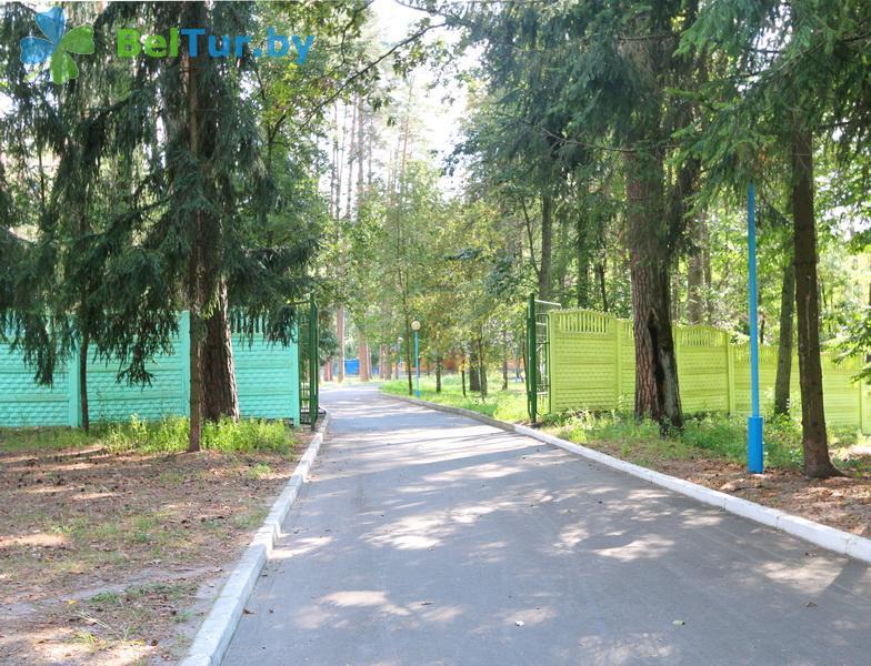 Отдых в Белоруссии Беларуси - база отдыха Лесные дали - Территория и природа