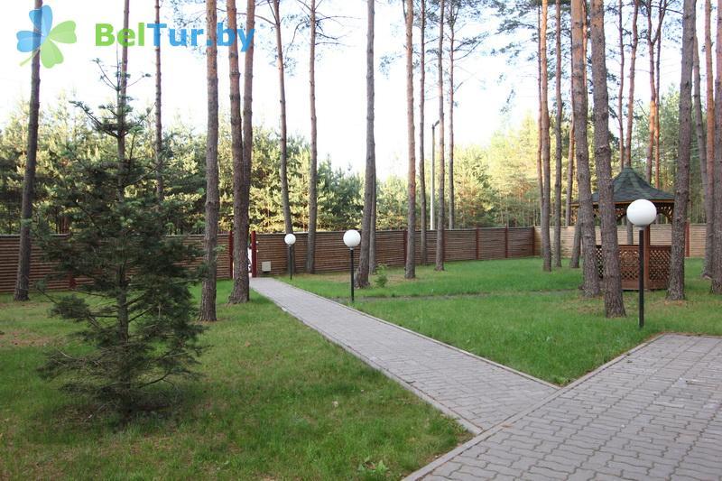Отдых в Белоруссии Беларуси - дом охотника Стародорожский, д.2 - Территория и природа