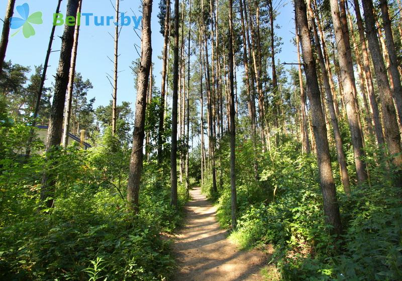 Отдых в Белоруссии Беларуси - туристический комплекс Браславские озера - Территория и природа