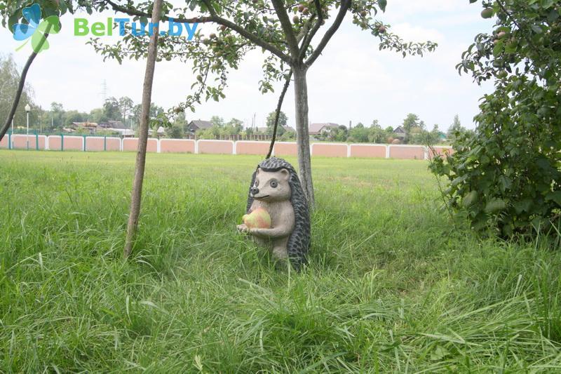 Отдых в Белоруссии Беларуси - база отдыха Милоград - Территория и природа