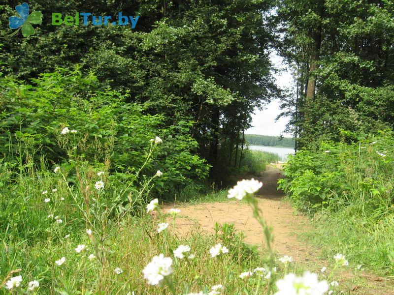 Отдых в Белоруссии Беларуси - база отдыха Озёры - Территория и природа