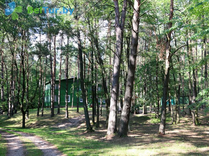 Адпачынак у Беларусі - база адпачынку Азёры - Тэрыторыя і прырода
