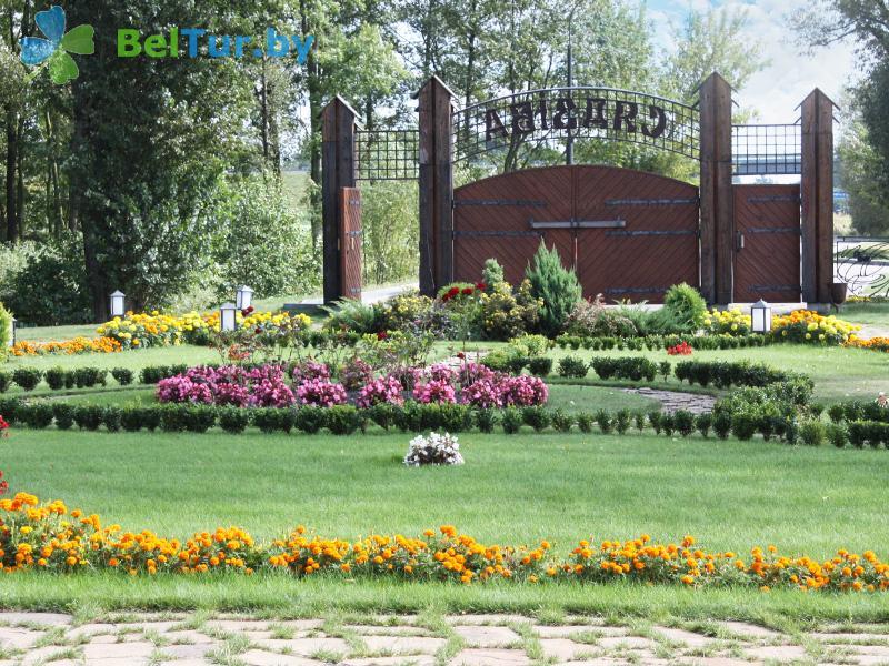 Отдых в Белоруссии Беларуси - туристический комплекс Рыньковка - Территория и природа