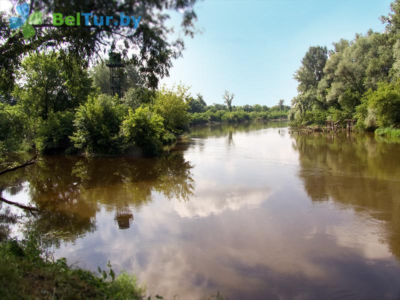 Отдых в Белоруссии Беларуси - туристический комплекс Рыньковка - Рыбалка