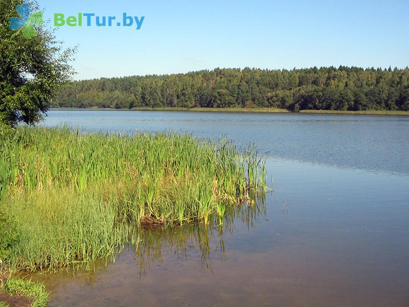 Отдых в Белоруссии Беларуси - база отдыха Вяча - Водоём