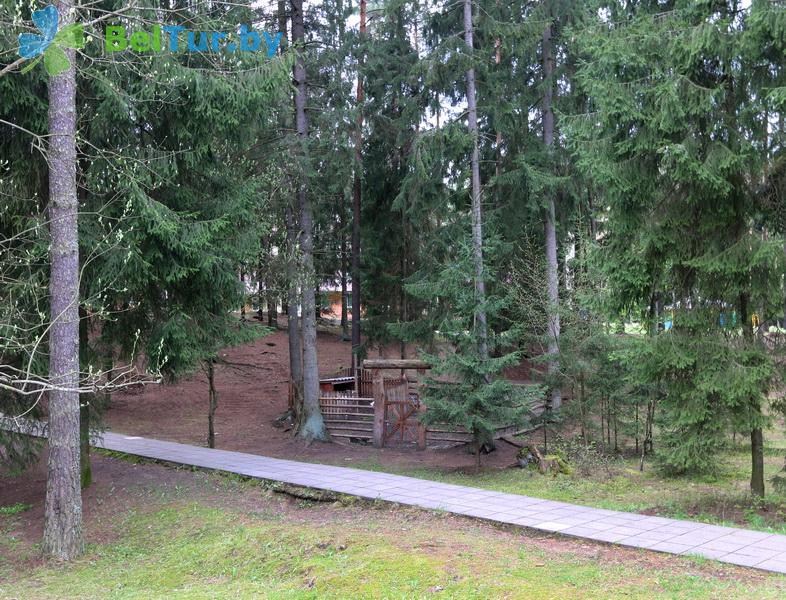 Отдых в Белоруссии Беларуси - база отдыха Галактика - Территория и природа