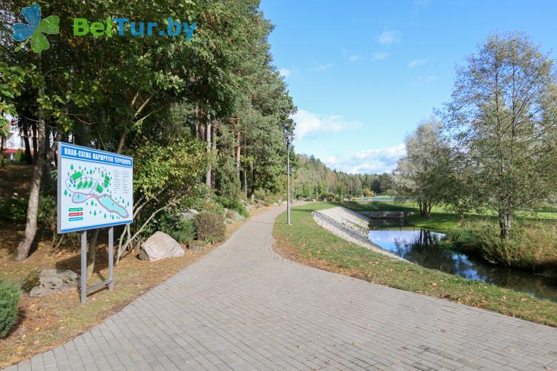 Отдых в Белоруссии Беларуси - оздоровительный центр Алеся - Территория и природа