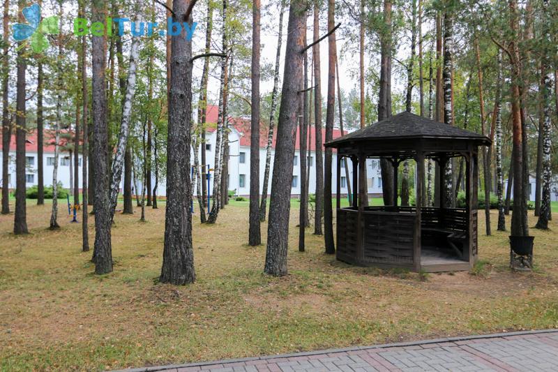 Отдых в Белоруссии Беларуси - оздоровительный центр Алеся - Беседка
