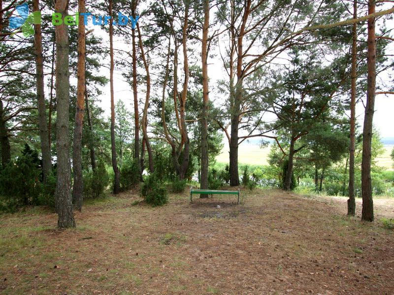 Отдых в Белоруссии Беларуси - туристический комплекс Высокий берег - Территория и природа