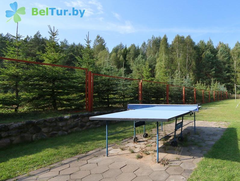 Отдых в Белоруссии Беларуси - туристический комплекс Природа-Люкс - Теннис настольный