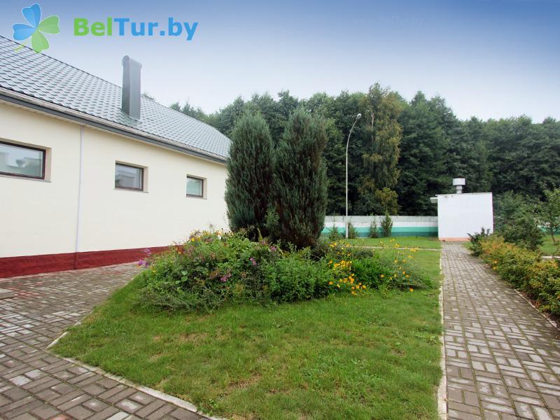 Отдых в Белоруссии Беларуси - гостевой дом Проньки - Территория и природа