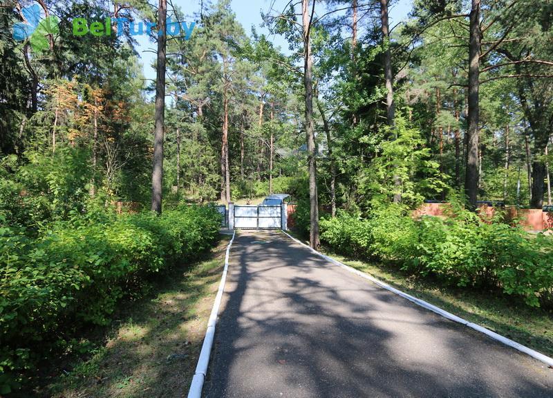 Отдых в Белоруссии Беларуси - гостевой дом Нарочь на Набережной - Территория и природа