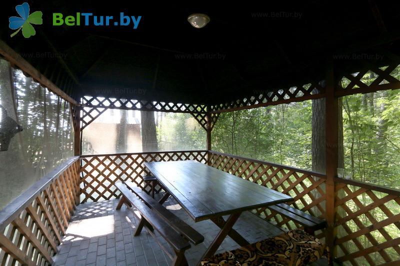 Отдых в Белоруссии Беларуси - гостевой дом Нарочь на Набережной - Беседка