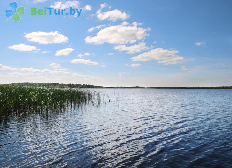 Отдых в Белоруссии Беларуси - гостевой дом Домжерицкое озеро - Водоём