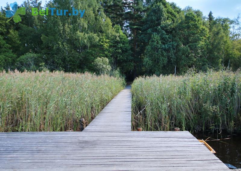 Отдых в Белоруссии Беларуси - гостевой дом Домжерицкое озеро - Территория и природа