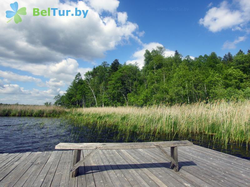 Отдых в Белоруссии Беларуси - гостевой дом Домжерицкое озеро - Пляж