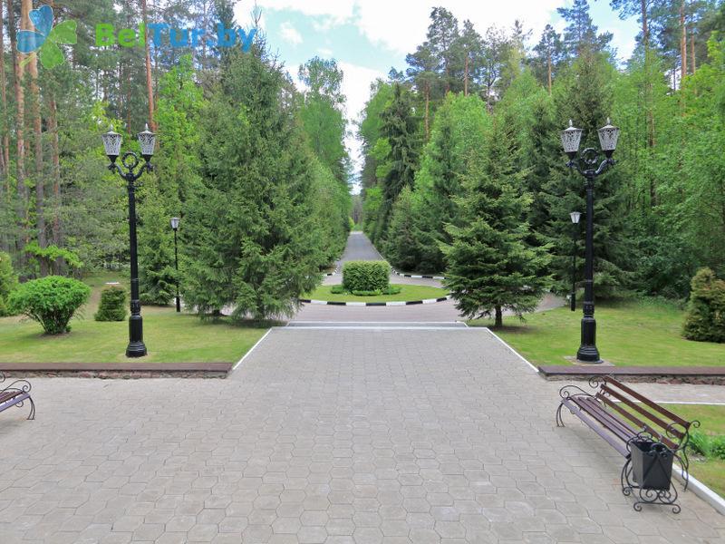 Отдых в Белоруссии Беларуси - гостиничный комплекс Плавно - Территория и природа