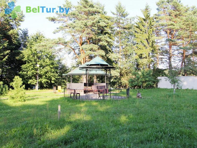 Отдых в Белоруссии Беларуси - база отдыха Добромысли - Площадка для шашлыков