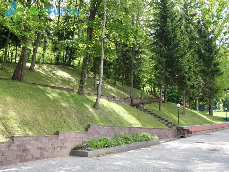 Отдых в Белоруссии Беларуси - гостиничный комплекс Динамо - Территория и природа