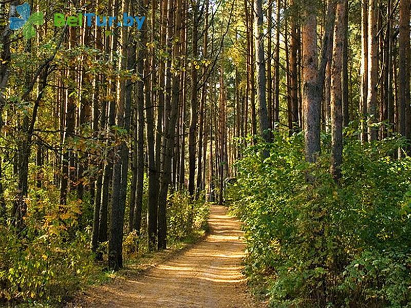 Отдых в Белоруссии Беларуси - пансионат ЛОДЭ - Территория и природа