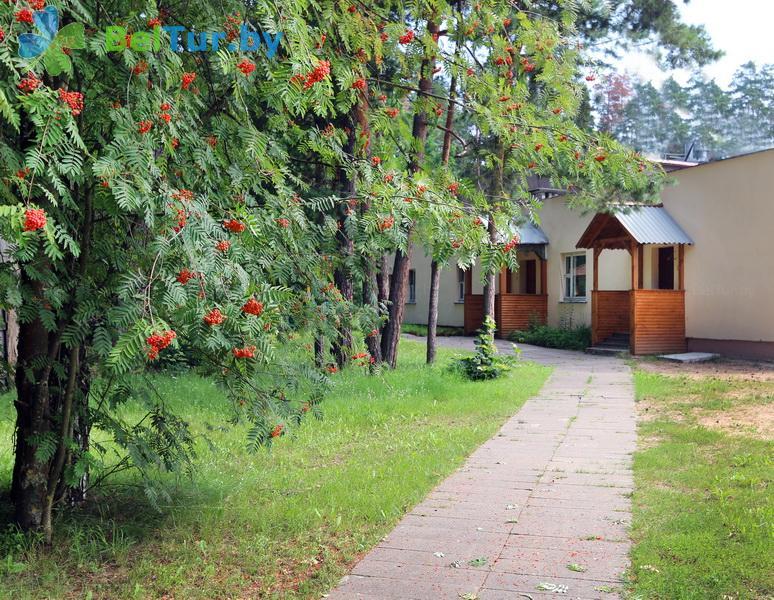 Отдых в Белоруссии Беларуси - гостиничный комплекс Каменюки - баня