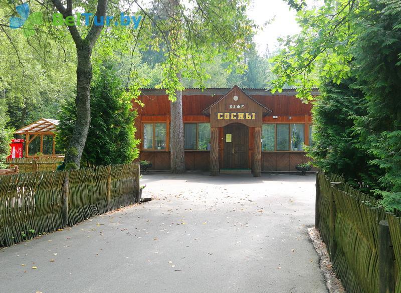 Отдых в Белоруссии Беларуси - гостиничный комплекс Каменюки - кафе Сосны