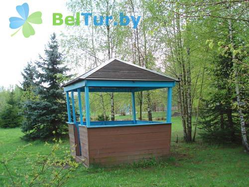 Отдых в Белоруссии Беларуси - детский оздоровительный лагерь Белые Росы - Территория и природа