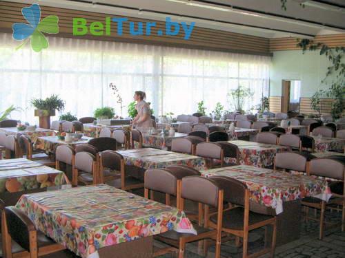 Rest in Belarus - health-improving camp for children Belye Rosy - Meals