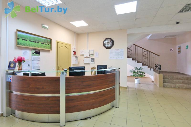 Rest in Belarus - hotel complex Kamenyuki k2 - Reception