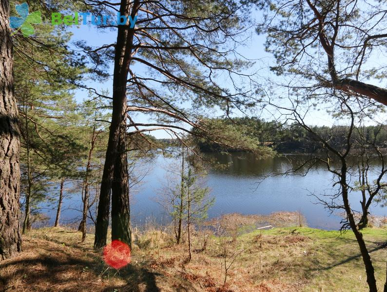 Отдых в Белоруссии Беларуси - усадьба Три бобра - Территория и природа