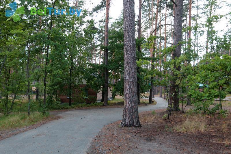 Отдых в Белоруссии Беларуси - гостиничный комплекс Ранчо - Территория и природа