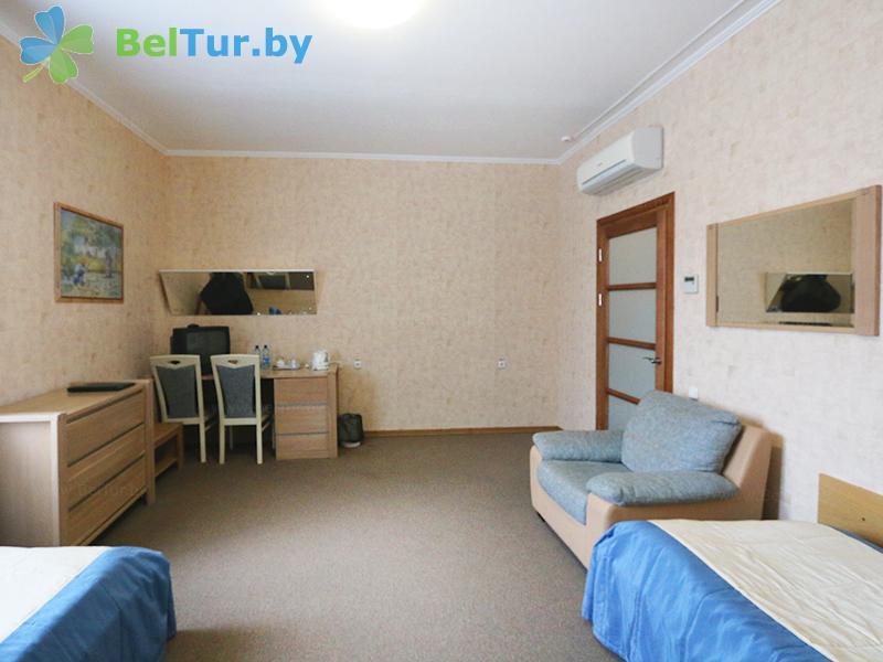 Отдых в Белоруссии Беларуси - гостиничный комплекс Над Припятью - двухместный однокомнатный (для людей с ограниченными возможностями ) (гостиница)