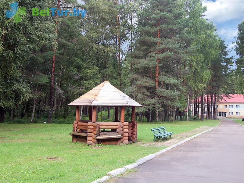Отдых в Белоруссии Беларуси - оздоровительный комплекс Чайка - Беседка