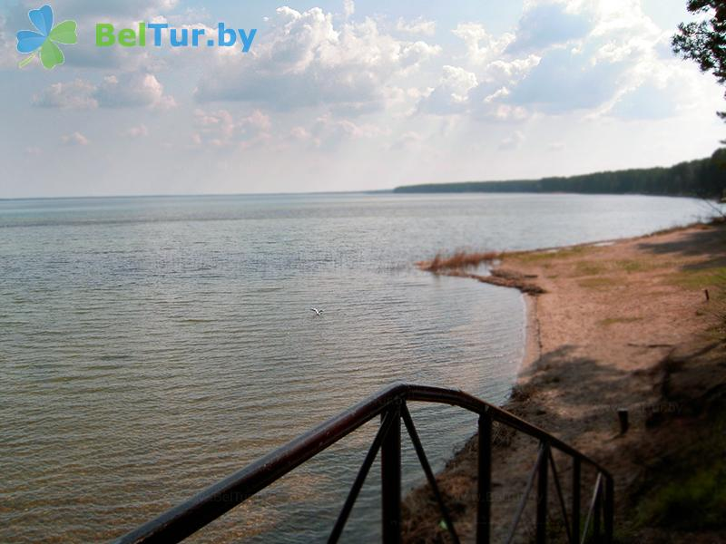Отдых в Белоруссии Беларуси - оздоровительный комплекс Чайка - Пляж