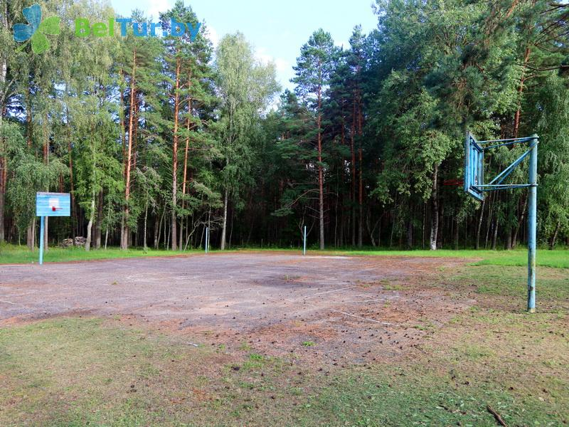 Отдых в Белоруссии Беларуси - оздоровительный комплекс Чайка - Спортплощадка