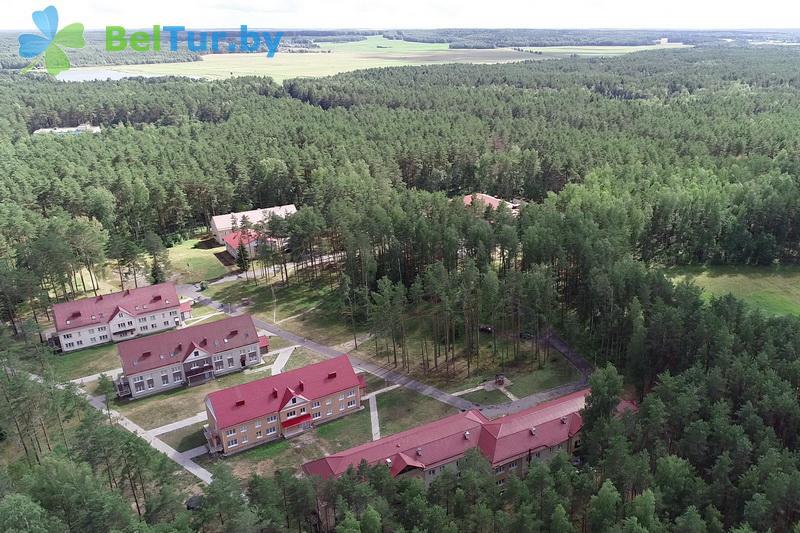 Отдых в Белоруссии Беларуси - оздоровительный комплекс Чайка - Территория и природа