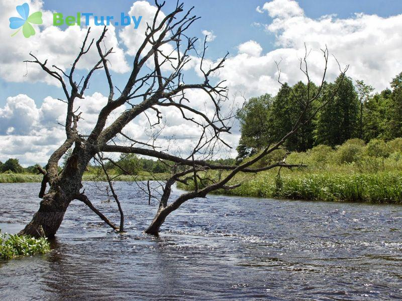 Отдых в Белоруссии Беларуси - дом охотника Белая тропа - Водоём