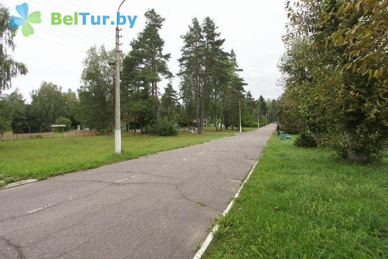 Отдых в Белоруссии Беларуси - база отдыха Лесная поляна - Территория и природа