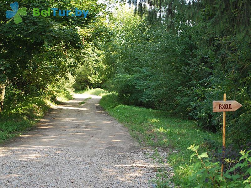 Отдых в Белоруссии Беларуси - база отдыха Пригодичи - Территория и природа
