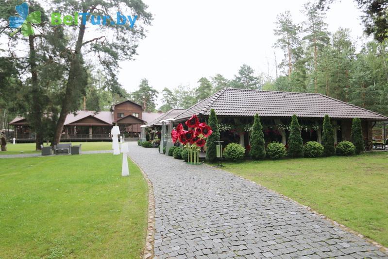 Отдых в Белоруссии Беларуси - база отдыха Лесная Гавань - Территория и природа