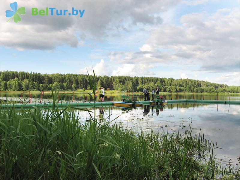Отдых в Белоруссии Беларуси - база отдыха Яново - Водоём